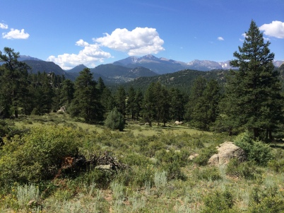 View of Long's Peak from Twin Owls Trail