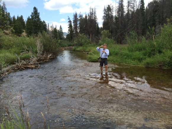 Fly-Fishing-in-Fish-Creek-Colorado-3