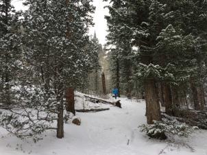 Trail to Gem Lake