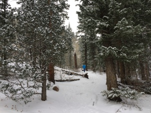 Trail to Gem Lake