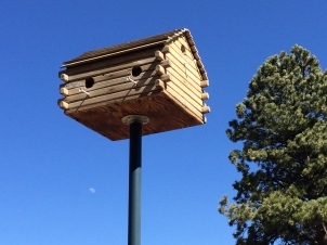 Closeup of the birdhouse on the golf course.