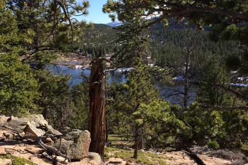 View from the trail above Lily Lake